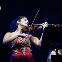 Classes of VIOLIN, song and musical language in Madrid by experienced international concert performer.