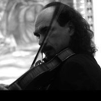Concert violinist with 25 years of experience, specialist in solo violin repertoire, gives private lessons.