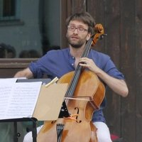 DeSono fellow musician with several years of experience abroad offers solfeggio lessons in Turin