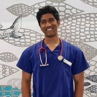 Experienced Economics Tutor, 4th Year Medical Student. 99% UCAT, 99.75 ATAR.  Qualified with a DHS Working with Children Check. Graduated from St. Peter's College