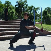 Kung fu and tai chi, online modalities vía ZOOM. Also in person training at parks, public open áreas and spaces.