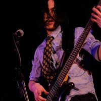 Performing bassist and classically trained pianist offering class in understanding musical terms