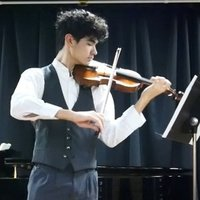 Preliminary to C Mus Violin Teacher Loganholme, Brisbane. Private Lessons for All Ages.