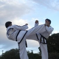Taekwondo classes in Sydney. We combine martial arts with fitness exercises. Argentina champion.